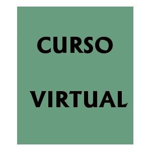 MATERIAL DISPONIBLE EN EL CURSO VIRTUAL